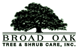 Broad Oak Tree & Shrub Care, Inc